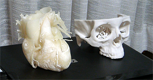 Image of Software for 3D printing from CT data